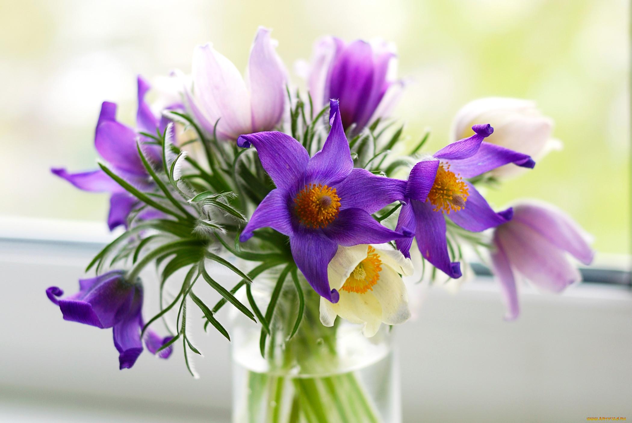 Получить букет цветов во сне